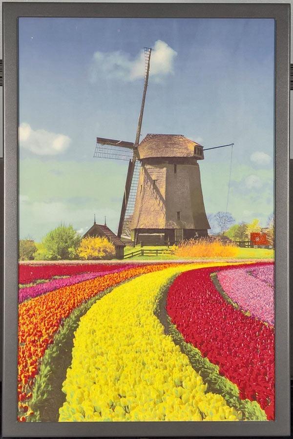 Пример изображения на 20-дюймовом дисплее полноцветной электронной бумаги E Ink