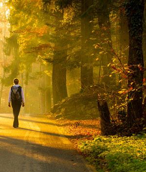 Развитие и тренировка памяти - меняйте маршрут при прогулке