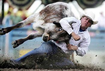 Быка за рога - 10 способов победить страх и волнение